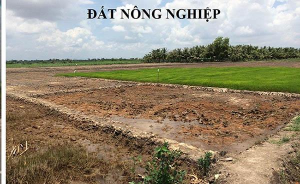 Số tiền giải ngân đất nông nghiệp không cao so với đất thổ cư